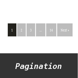 Phân trang Wordpress